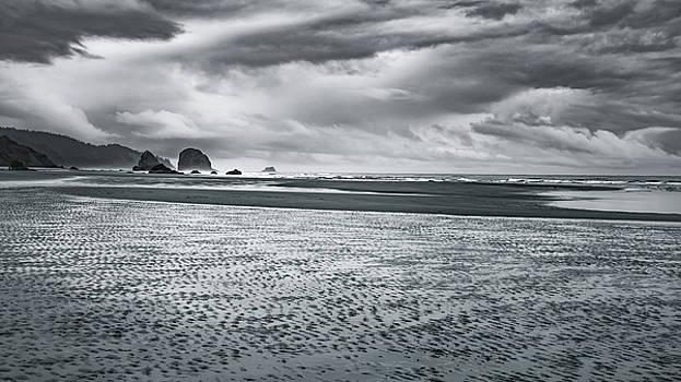 Coastal Whisper by Don Schwartz