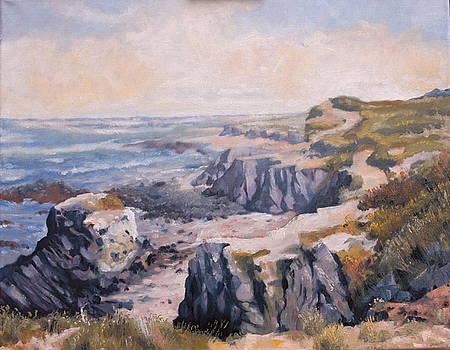 Coastline Alentejo Portugal by HGW Schmidt