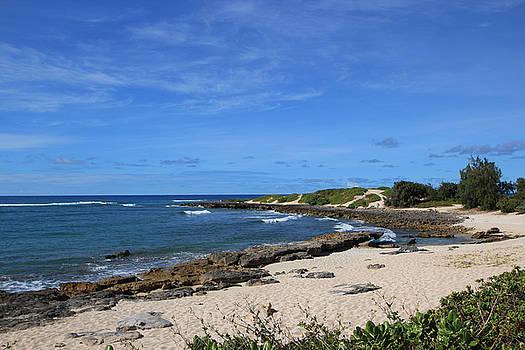 Coastline of Turtle Bay by NaDean Ribitzki