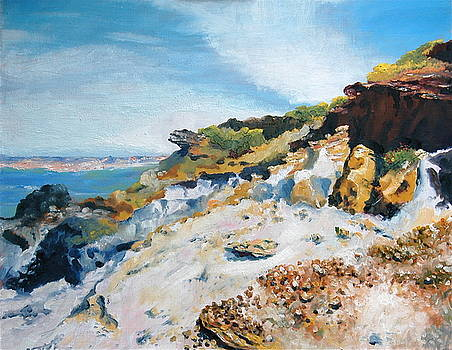 Coastline Vila Nova de Milfontes Portugal by HGW Schmidt