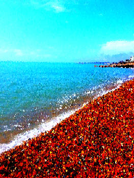 Cobbled Beach by Jan Steadman-Jackson