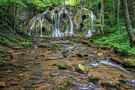Cobweb Falls in Virginia by Matt Plyler