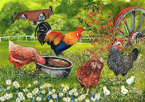 Cock of the walk by Val Stokes
