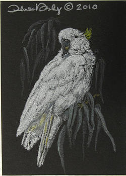 Cockatoo - Mini Art by Theresa Higby