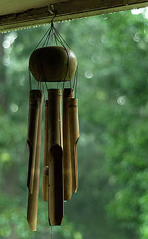 Coconut and Bamboo Wind Chime, Hunter Hill, Hagerstown, Maryland by James Oppenheim