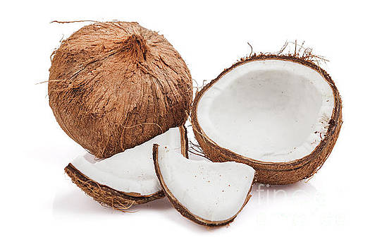 Coconut Isolated on White by Leslie Banks