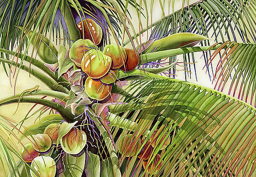 Coconut Palm by Lyse Anthony