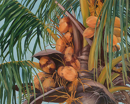 Coconut Palm by Rita-Anne Piquet