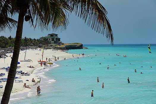Reimar Gaertner - Coconut palm tree and Xanadu mansion at white sand beach of Vara
