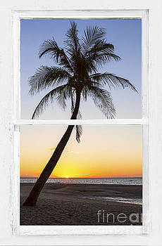 James BO Insogna - Coconut Palm Tree Tropical Sunset Window View