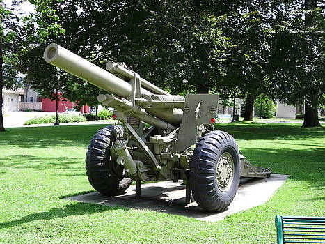 Coe Park Cannon by Timothy Jones