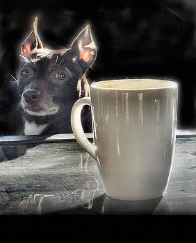 Coffee With Milo by T Cook