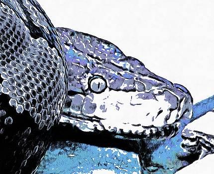 Coiled snake by Ashish Agarwal