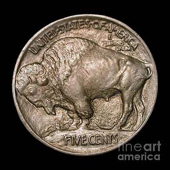 Jost Houk - Coin Buffalo
