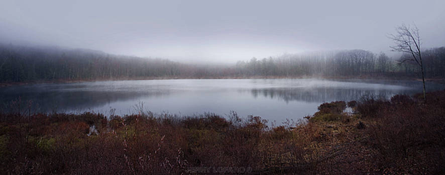 Cold and misty morning... by Jerry LoFaro