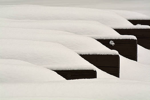 Cold Benches in Yellowstone National Park by Bruce Gourley