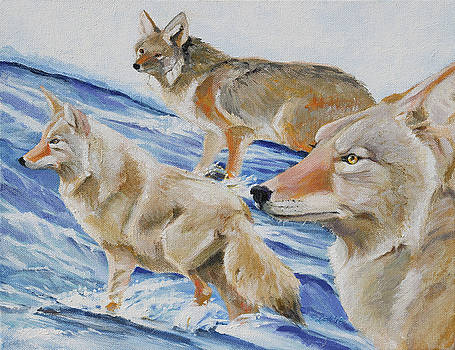 Cold Crossing by Pam Little