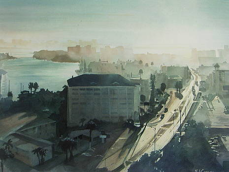 Cold Dawn on Gulf Boulevard by Elizabeth Carr
