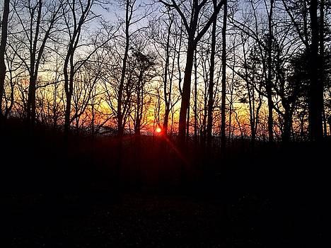 Cold Sunset by William Sullivan