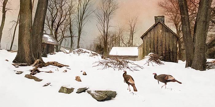 Cold Turkey by Robin-Lee Vieira