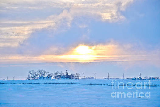 Cold Winters Day by Kathy M Krause