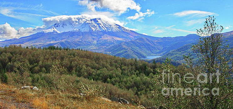 Coldwater Lake at Mt. St. Helens Panorama by Ansel Price