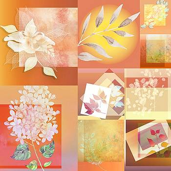 Collage-3 by Nina Bradica