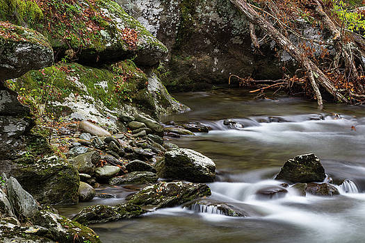Collection of rocks and deadfall by a river in the Great Smoky Mountains by Natalie Schorr