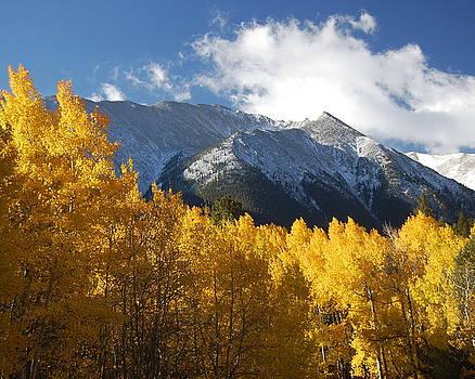 Collegiate Peaks in Autumn by Rhonda Van Pelt
