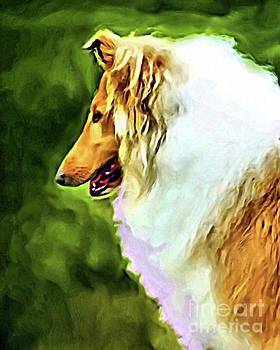 Collie Art by Lynn A Marie