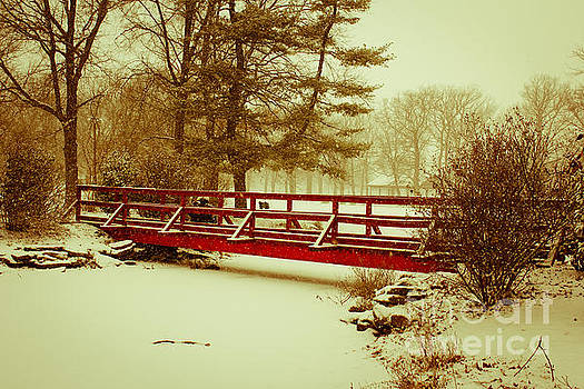 Snow Day in Collingswood by Patrick Rodio