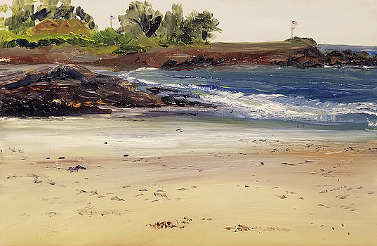 Colony Low Tide by Susan E Hanna