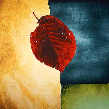 Color Block by Irena Orlov