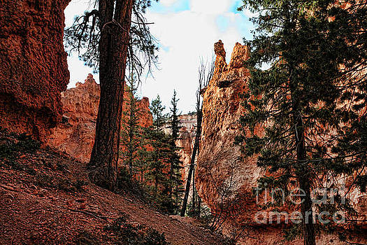 Chuck Kuhn - Color Bryce Canyon 8