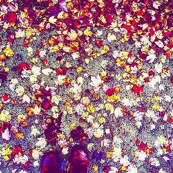 True Colors by Sharon Halteman