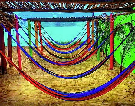 Color Hammocks by Coleman Mattingly
