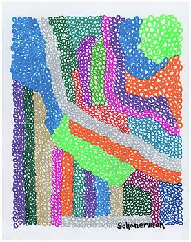 Color In Motion by Susan Schanerman