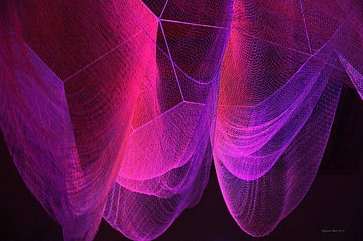 Color Infusion 1 by Suzanne Stout