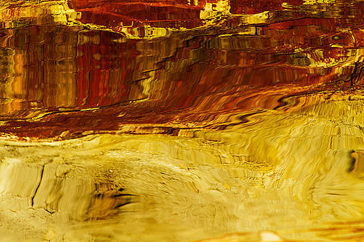 Color Splash Set  by Gary Larson