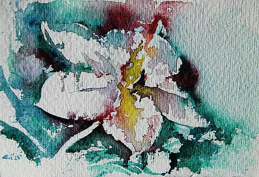 Color by Tatiana Ilieva