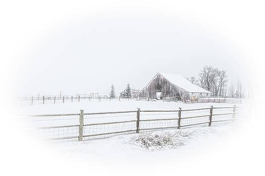 Colorado Barn by Sean Allen