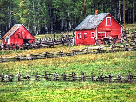 Colorado Countryside  by Charlotte Schafer