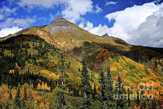Colorado Fall by Steve Boice