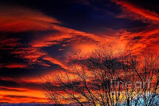Colorado Fire In The Sky by Jon Burch Photography