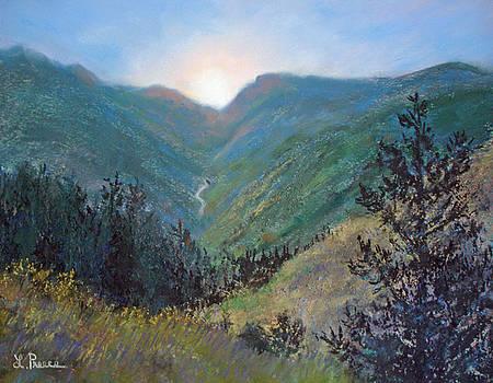 Colorado Highway by Linda Preece
