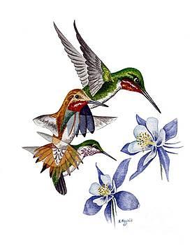 Colorado Hummingbirds by Scott Rashid