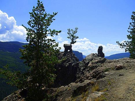 Colorado Mountains by Allison Jones