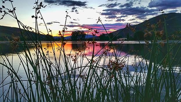 Colorado Pretty  by Fiona Kennard