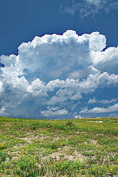 Colorado Sky by Richard Risely