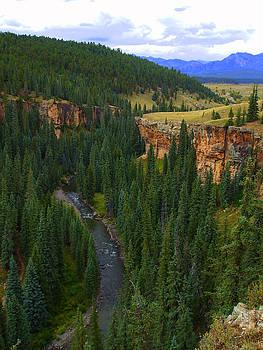 Colorado Stream by Allison Jones